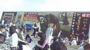 東京競馬場へ行こう 2