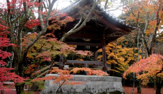 京都紅葉めぐり2010 その3(金閣寺&トロッコ列車&清水寺)