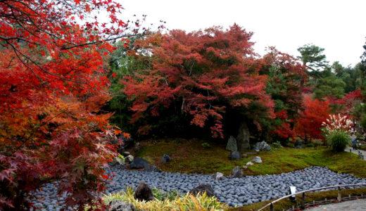 京都紅葉名所めぐり2011 ~宝厳院(ほうごういん)~