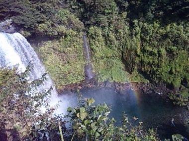白糸の滝 & 田貫湖