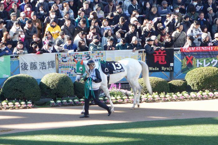 2013有馬記念8