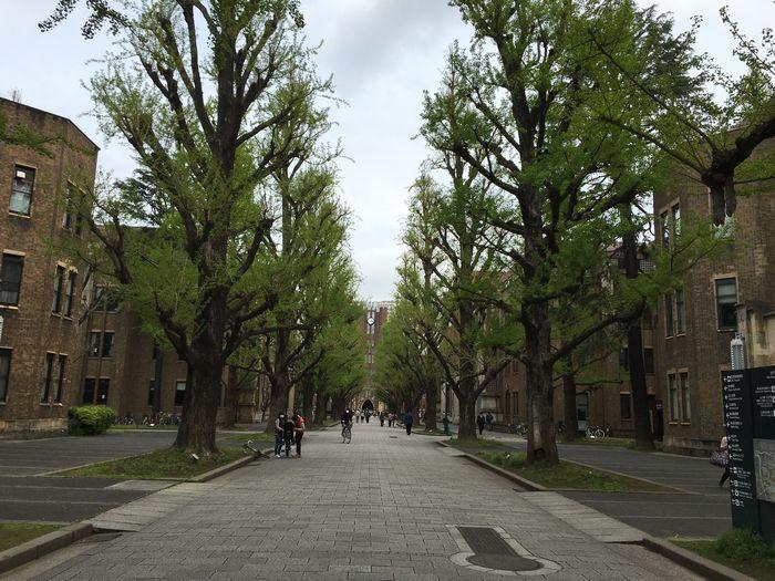 東京大学 中央食堂5