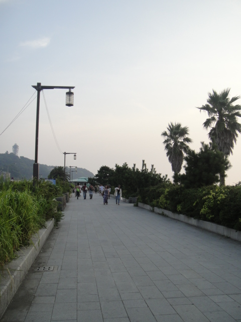 DSC03346.jpg