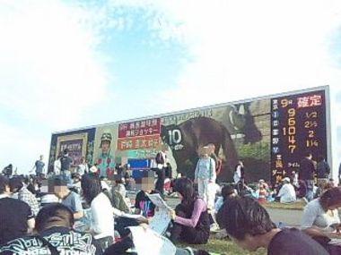 東京競馬場・ゴール前巨大スクリーン